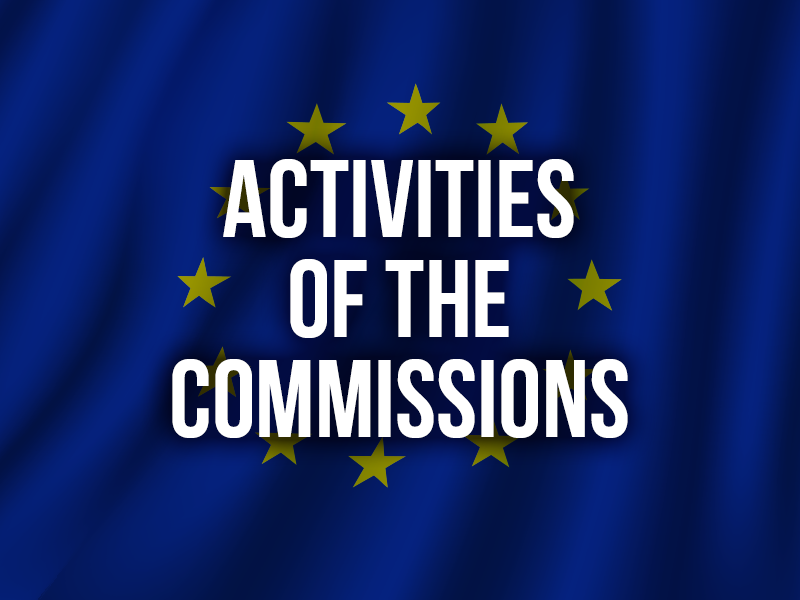 ACTIVITIES OF THE COMMISSIONS