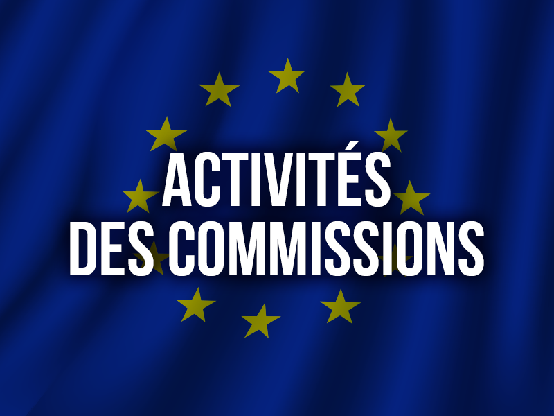 ACTIVITÉS DES COMMISSIONS